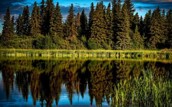 река, noosa, красивые, full, горы, пейзажи -, австралия,