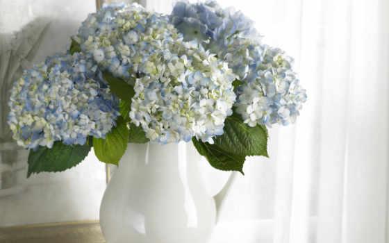 цветы, картина