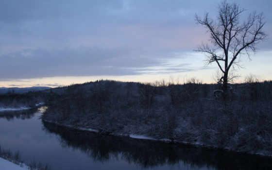 free, winter, снежинка, собранный, другие, качественные, fonwall, облако, лес, природа