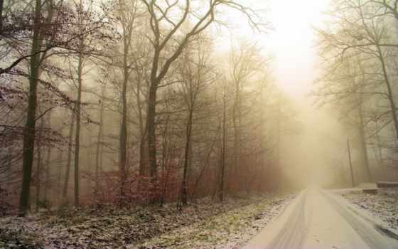 природа, снег, winter Фон № 57707 разрешение 1920x1200