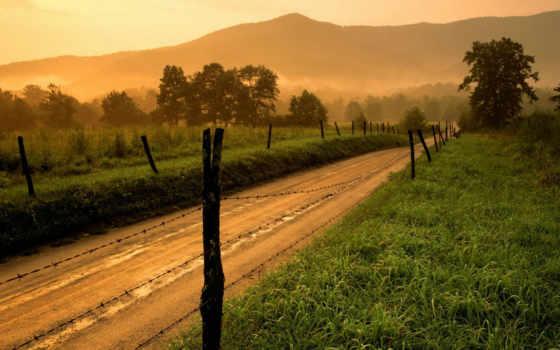 дорога, берег, следующие, смотрите, бе, чудеса, природы, дерево, одинокое, подборка, далеко, снежные, есть, dangerous,
