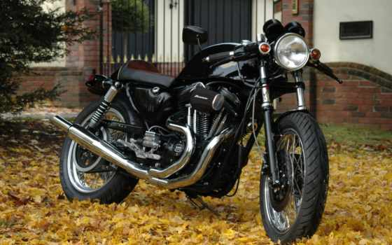 harley, davidson, мотоцикл