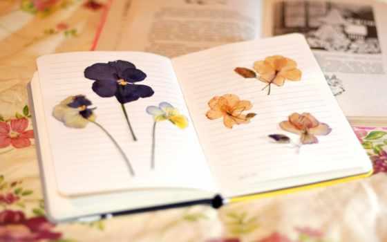 livro, flores, que, para, resenha, instante, livros, uma, flor,