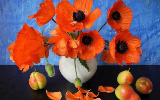 ваза, натюрморт, cvety, маки, груши, лепестки, фрукты,