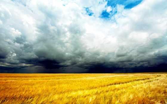 природа, landscape, тучи, буря, поле,