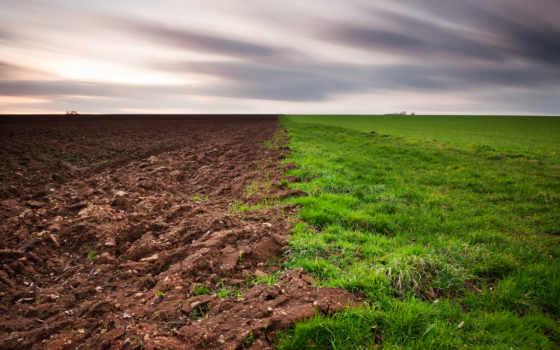 land, земли, почвы, грунт, года, than, страница, сонник, мотоблок, землю, архивы,