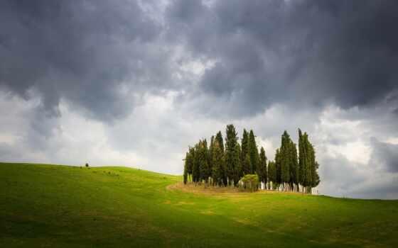 hill, закат, добавить, озеро, побережье, трава, природа, пожаловаться, дерево, оригинал