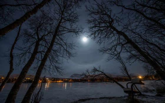 ночь, winter, город, park, озеро, скамейка, луна, огни,