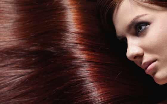 волосы, красавица, parlour, плакат, roye, loss, color, ladonna