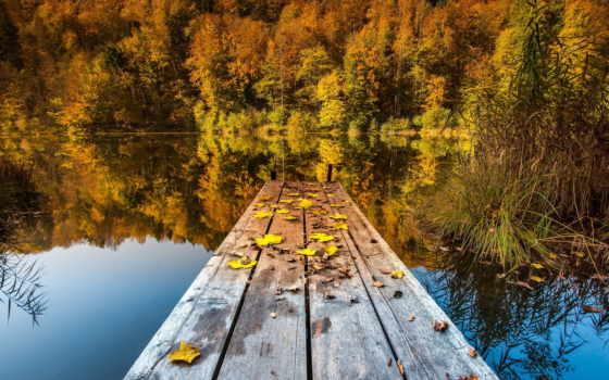 осень, озеро, природа, листва, мост, лес,