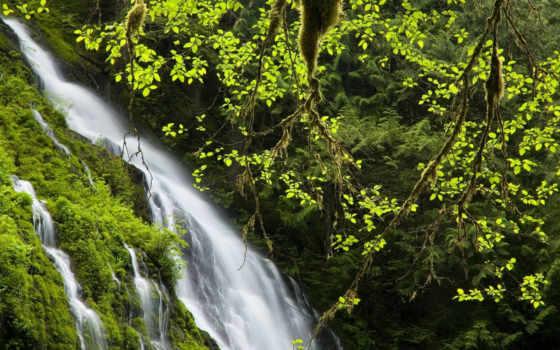 природа, зелёный, scenery, фото, www, white, eu, да, горы,
