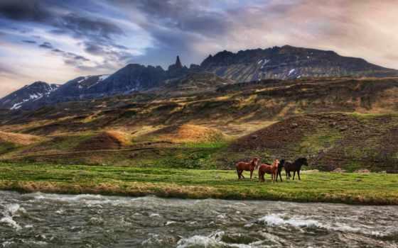 лошади, горы, река, oblaka,