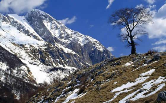 горы, телефон, природой, mobile, словении, called,