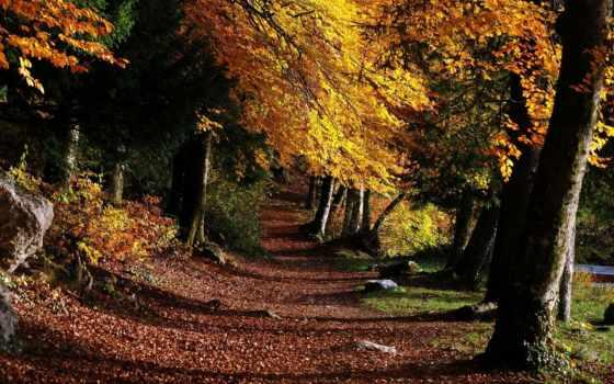 природы, photoshop, завораживающие, красоты, фона, фоны, природа, часть, фотошопа, мб, пейзажи -,