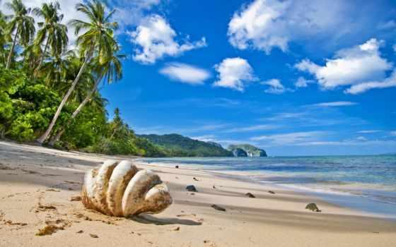 море, пляж, песок, sun, waves, пальмы, берег, oblaka, summer,
