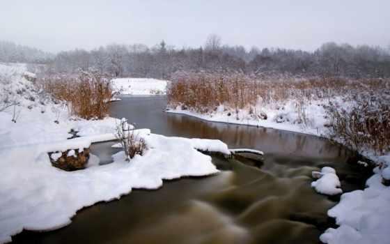 камыш, снег, река, winter, лес, природа, лед,