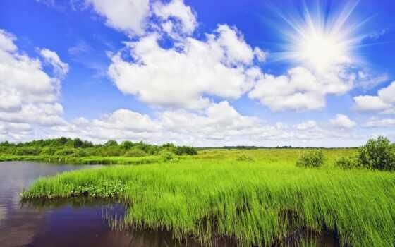 sun, ну, love, report, sunshine, ozhidatsya, счастье, песнь, cvety, погода
