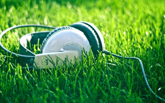 headphones AKG on the grass