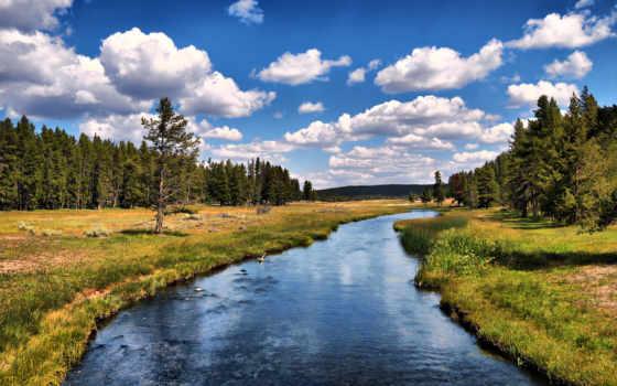река, лес, красивые
