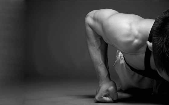 мотивация, мышцы, отжимания
