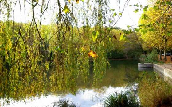 озеро, изображение, desktop, природа, песочница, salzkamergut, картинка,