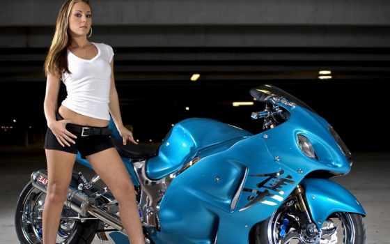 suzuki, gsx, hayabusa, мотоцикл, перепелятник,
