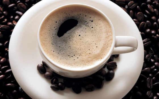 кофеёк, вопрос, timson