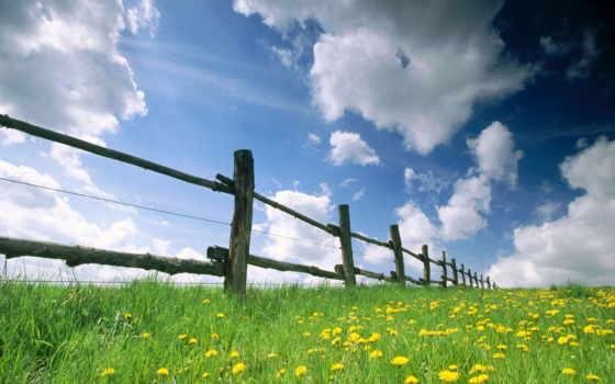 pantalla, fondo, fondos, cielo, para, campo, весна,