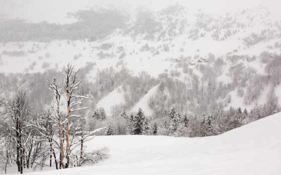 снег, природа, winter