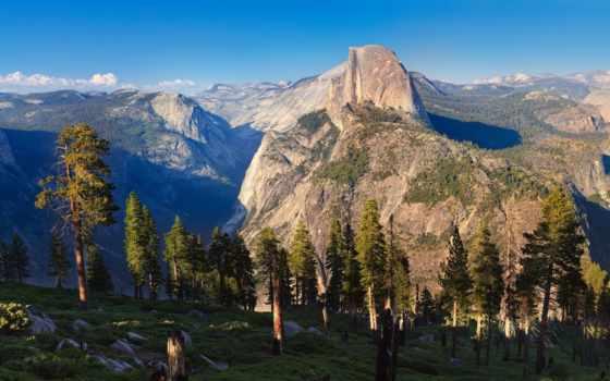 сосны, горы, утро, yosemite, park, half, dome, природа, national, альпы,