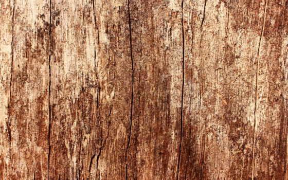 текстура, дерево, текстуры, дуб, изображений, pinterest, тыс, найдено, дерева,