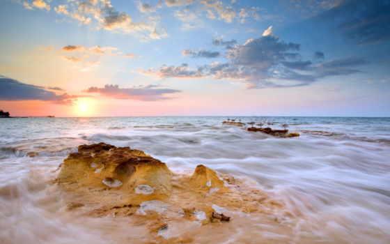 птицы, seascape, море