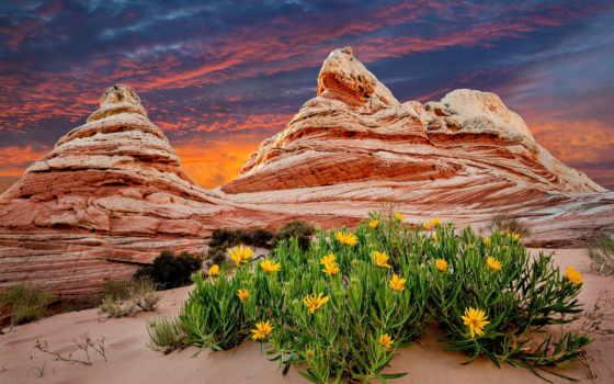горы, природа Фон № 24998 разрешение 1920x1200