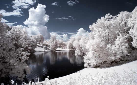 winter, снег, landscape Фон № 121652 разрешение 2560x1600
