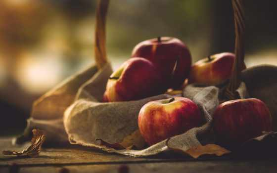 плод, apple, еще, apples, life, cristina, еда,