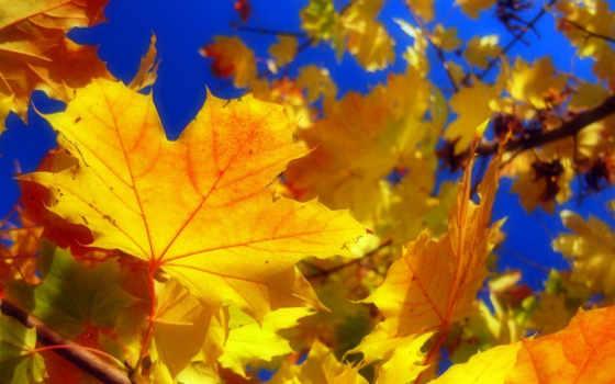осень, время