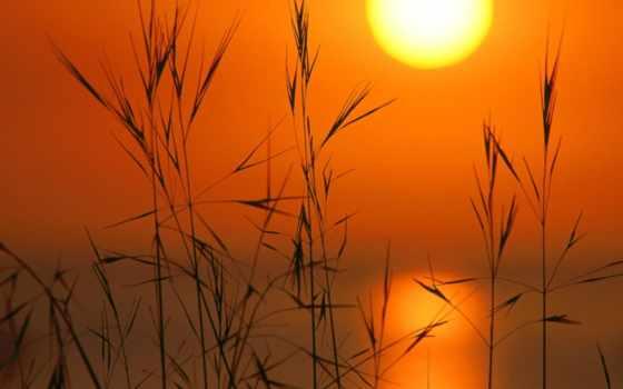 sun, закат, небо
