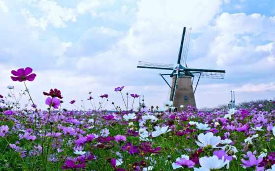 sözler, ilgili, ile, bahar, ilkbahar, güzel, sözleri, sozleri, azim, şiddet, isim,