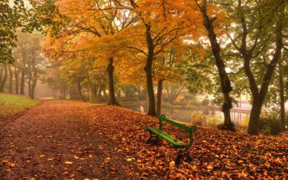 осень, скамейка, листва, парке, природа, листочки,