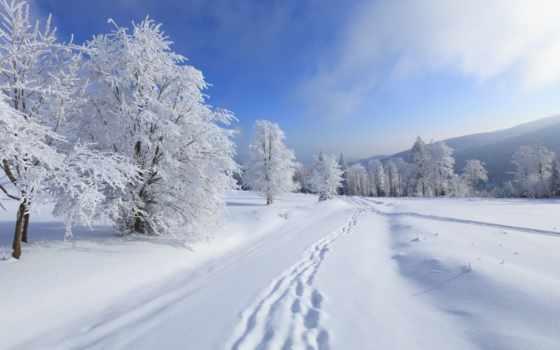 снег, зима Фон № 32060 разрешение 1920x1080