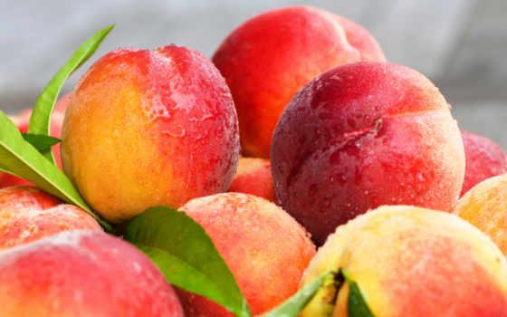 персики, фрукты, нектарин, листва, персик, еда, peaches,