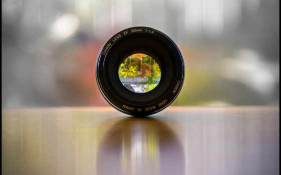 lens, canon, through