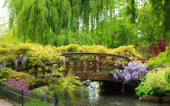 природа, мост, широкоформатные