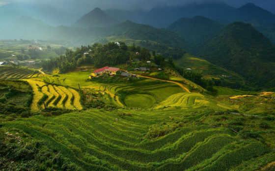 con, vietnam, flores, domingo, красивые, feliz, mensajes, que, imágenes, paisajes,