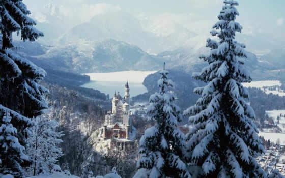 лес, winter, картинка, зимние, деревя, лесу, зимняя, reservoir, зимнем,