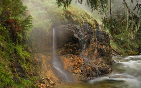 jungle, река, море, trees, берег, природа, дерево, мар, дорога, камни, растительность,