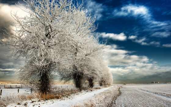 winter, дорога, снег, trees, desktop, природа, фон, free,