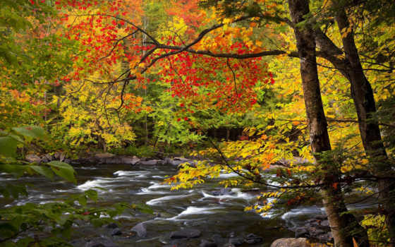 онтарио, осень, река