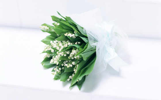 цветы, ландыши, широкоформатные