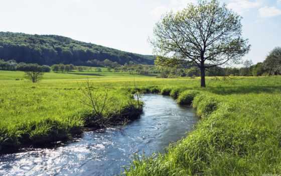 луг, река, германия